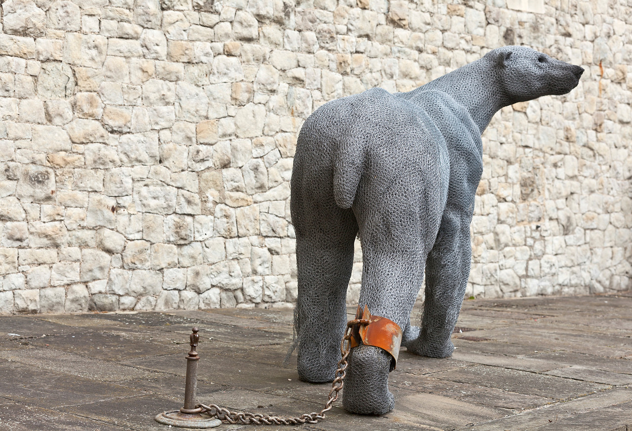 Sculpture of a polar bear in shackles at the Tower of London