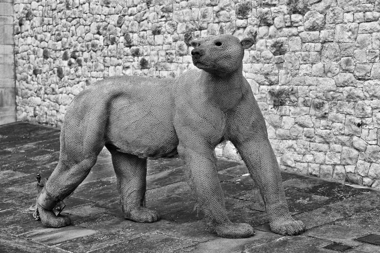 Polar bear sculpture at the Tower of London